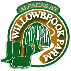 Alpacas at Willowbrook Farm Logo